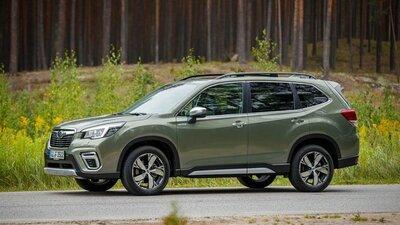 Bild: Subaru Forester  Gebrauchtwagen
